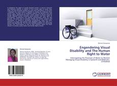 Buchcover von Engendering Visual Disability and The Human Right to Water