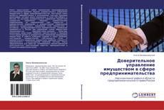 Borítókép a  Доверительное управление имуществом в сфере предпринимательства - hoz