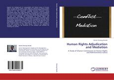 Bookcover of Human Rights Adjudication and Mediation