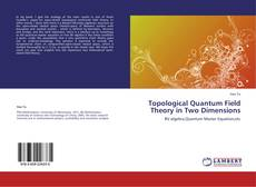 Bookcover of Topological Quantum Field Theory in Two Dimensions
