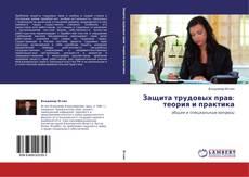 Borítókép a  Защита трудовых прав: теория и практика - hoz