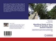 Borítókép a  Mycofloral Study of Pinus Forest of Samahni, Azad Kashmir Pakistan - hoz