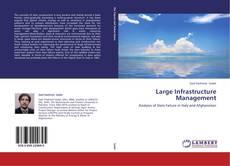 Large Infrastructure Management的封面