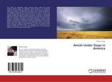 Copertina di Amish Under Siege in America