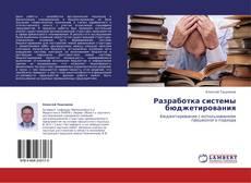 Разработка системы бюджетирования kitap kapağı