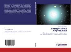 Информатика мироздания kitap kapağı