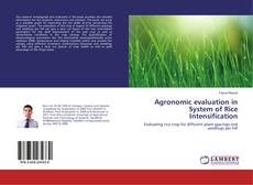 Bookcover of Agronomic evaluation in System of Rice Intensification