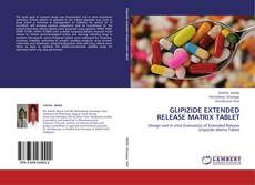 Bookcover of GLIPIZIDE EXTENDED RELEASE MATRIX TABLET
