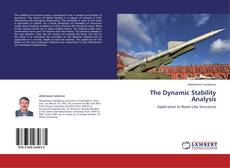 Copertina di The Dynamic Stability Analysis