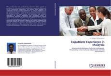 Bookcover of Expatriate Experience in Malaysia