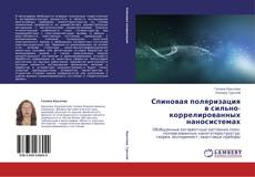 Buchcover von Спиновая поляризация в сильно-коррелированных наносистемах
