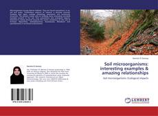 Couverture de Soil microorganisms: interesting examples & amazing  relationships