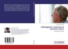 Bookcover of Heideggerian meaning of prostate cancer