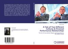 Bookcover of A Tale of Two Different Cultures & Financial Performance Relationships