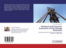 Technical and Economic Evaluation of Gas Storage Reservoirs kitap kapağı