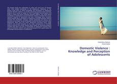 Portada del libro de Domestic Violence : Knowledge and Perception of Adolescents
