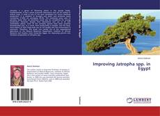 Bookcover of Improving Jatropha spp. in Egypt