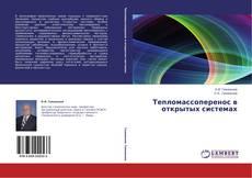 Обложка Тепломассоперенос в открытых системах