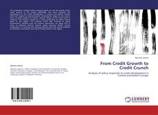 From Credit Growth to Credit Crunch kitap kapağı