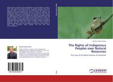 Bookcover of The Rights of Indigenous Peoples over Natural     Resources