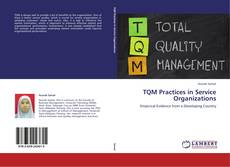 Bookcover of TQM Practices in Service Organizations