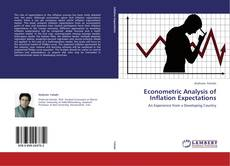Bookcover of Econometric Analysis of  Inflation Expectations