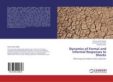 Bookcover of Dynamics of Formal and Informal Responses to Shocks