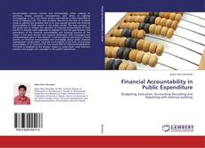 Financial Accountability in Public Expenditure的封面