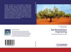 Buchcover von Soil Remediation Engineering