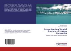 Determinants of Capital Structure of Leasing Companies kitap kapağı