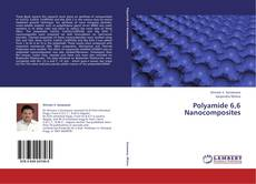Bookcover of Polyamide 6,6  Nanocomposites