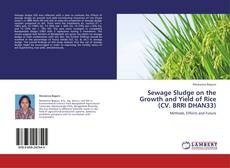 Bookcover of Sewage Sludge on the Growth and Yield of Rice (CV. BRRI DHAN33)