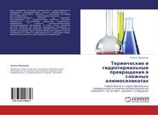 Термические и гидротермальные превращения в  сложных алюмосиликатах kitap kapağı