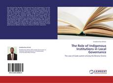 The Role of Indigenous Institutions in Local Governance的封面