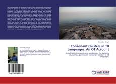 Bookcover of Consonant Clusters in TB Languages: An OT Account