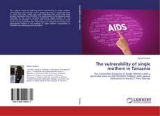 Copertina di The vulnerability of single mothers in Tanzania