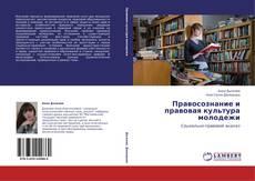 Bookcover of Правосознание и правовая культура молодежи