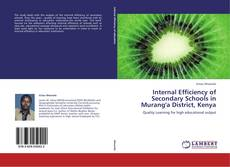 Couverture de Internal Efficiency of Secondary  Schools in Murang'a District, Kenya