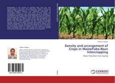 Bookcover of Density and arrangement of Crops in Maize/Faba Bean Intercropping