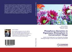 Bookcover of Phosphorus Dynamics in Pigeonpea Rhizosphere in Conservation Tillage