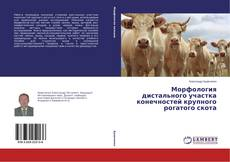 Bookcover of Морфология дистального участка конечностей крупного рогатого скота