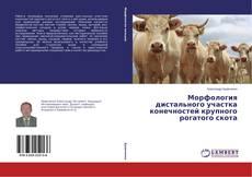 Borítókép a  Морфология дистального участка конечностей крупного рогатого скота - hoz