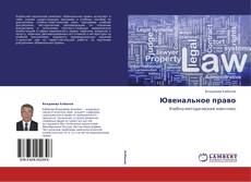 Buchcover von Ювенальное право