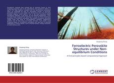 Bookcover of Ferroelectric Perovskite Structures under Non-equilibrium Conditions