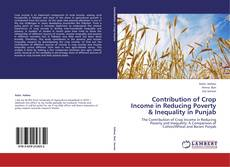 Contribution of Crop Income in Reducing Poverty & Inequality in Punjab kitap kapağı
