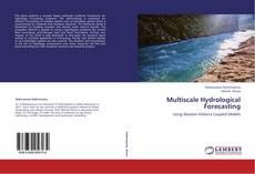 Bookcover of Multiscale Hydrological Forecasting