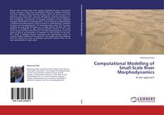 Bookcover of Computational Modelling of Small-Scale River Morphodynamics