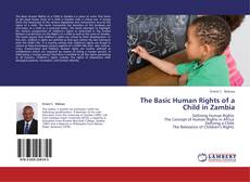 Bookcover of The Basic Human Rights of a Child in Zambia