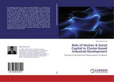 Bookcover of Role of Human & Social Capital in Cluster-based Industrial Development