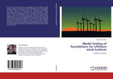 Bookcover of Model testing of foundations for offshore wind turbines